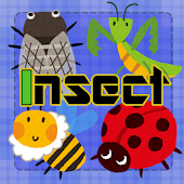 Insect Concentration (game)