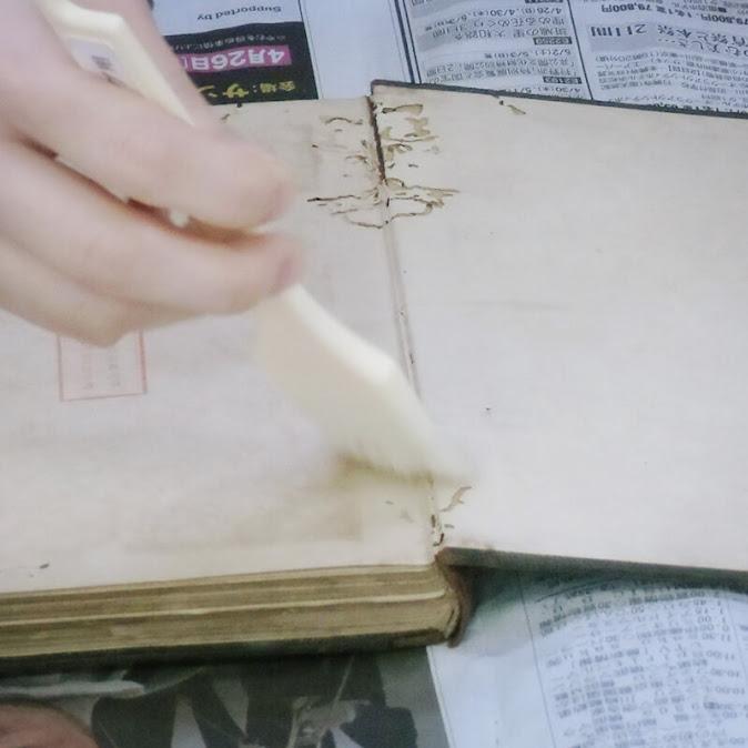 (54)洋式本修復体験【初級編】