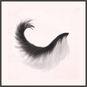 素直な尻尾