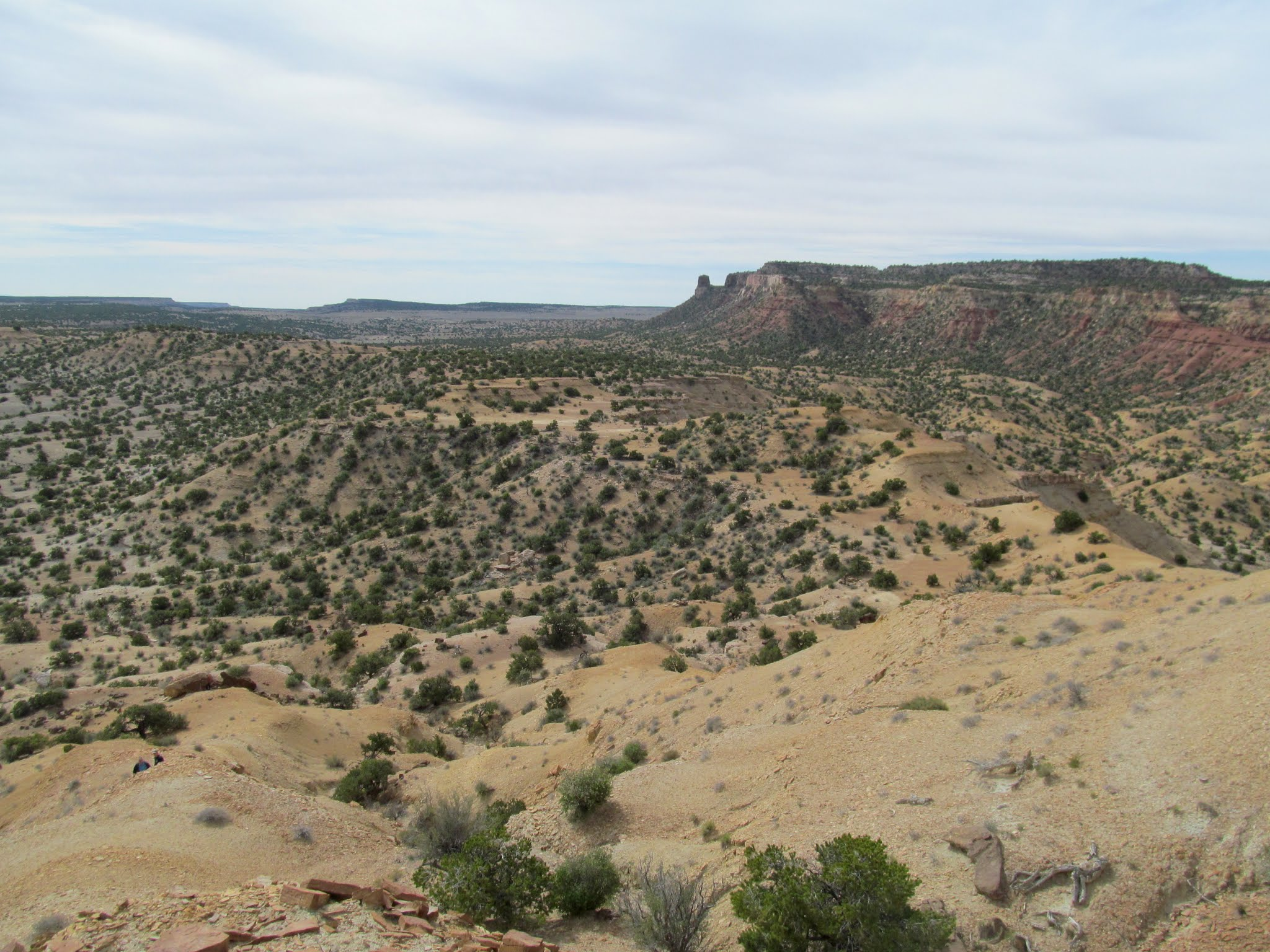 Photo: View southeast from the Wickiup
