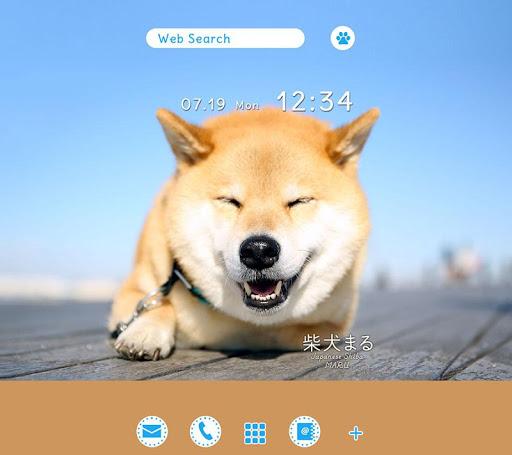 Dog Wallpaperu3000Shiba Inu Maru 1.0.1 Windows u7528 2