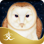 App Icon for Messenger Oracle - Ravynne Phelan App in United States Google Play Store