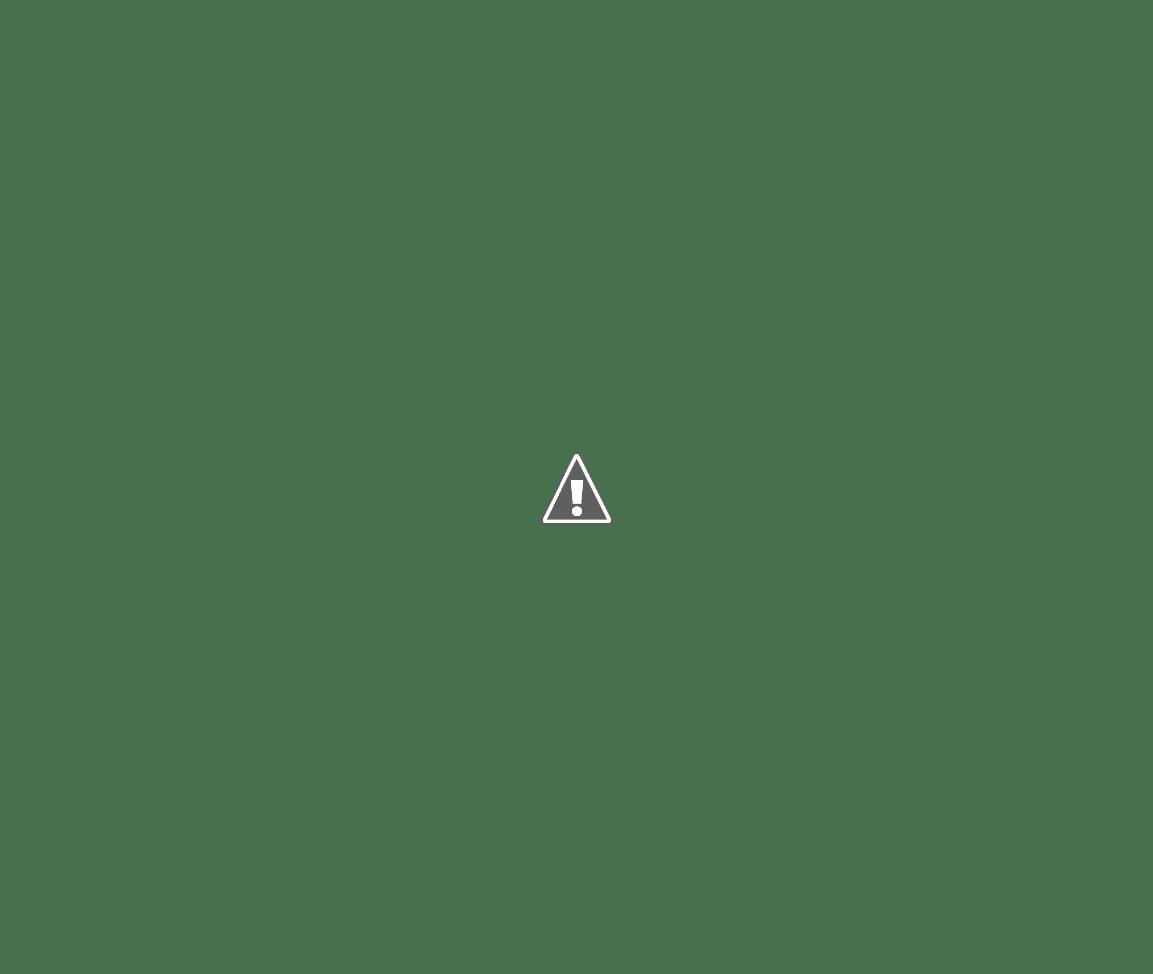 Zsira - Szentháromság-oszlop a templom mellett