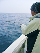 Photo: 今日は、インチクを楽しむ金田さんです・・。