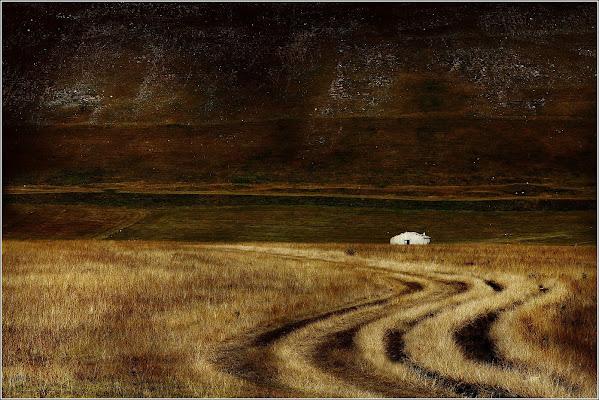 La via nel campo di Montanaro