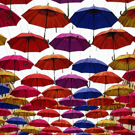 Umbrella Street ~ Bath by Ingrid Anderson-Riley - Artistic Objects Other Objects