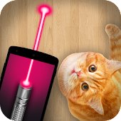 Laser Pointer Toy for Cat