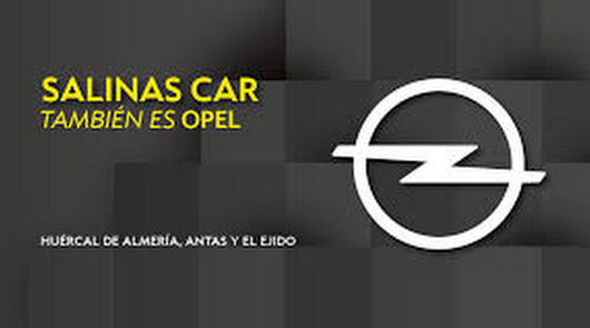 Ahora Opel Salinas Car, lleva y recoge tu coche al taller sin coste alguno