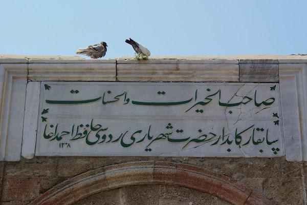 Gli arabi piccioni di Il Giusto