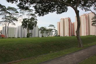 Photo: Year 2 Day 131 - Viewed from the Yio Chu Kang Road, Flats Between Jalan Kayu and Jalan Woodbridge