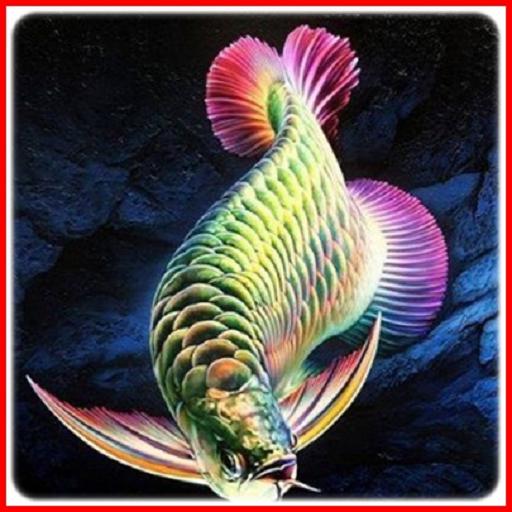 Arowana Fish Animation