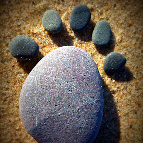 Stepping Stones by Yvette O Beirne - Instagram & Mobile Android ( sand, feet, pebbles, beach, stones )