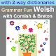 Grammar Fun Welsh with Cornish & Breton dictionary (game)