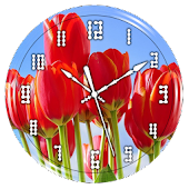 Tulips Clock Live Wallpaper