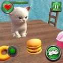Crazy Kitty Cat Home Adventure icon