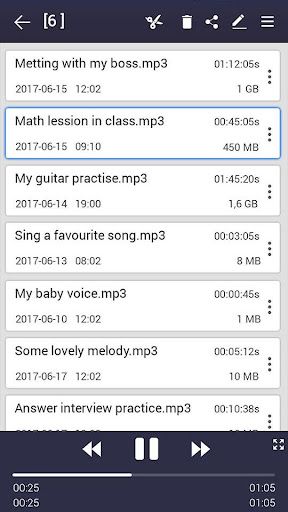 voice recorder screenshot 19