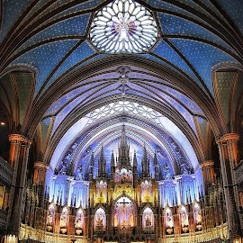 The Basilica by Ronnel Villanueva - Buildings & Architecture Places of Worship ( canada, montreal, church, notre dame, cathedral, building, religion, architecture )
