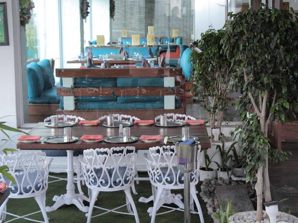 best-buffet-dinner-restaurants-hyderabad-exotica_image