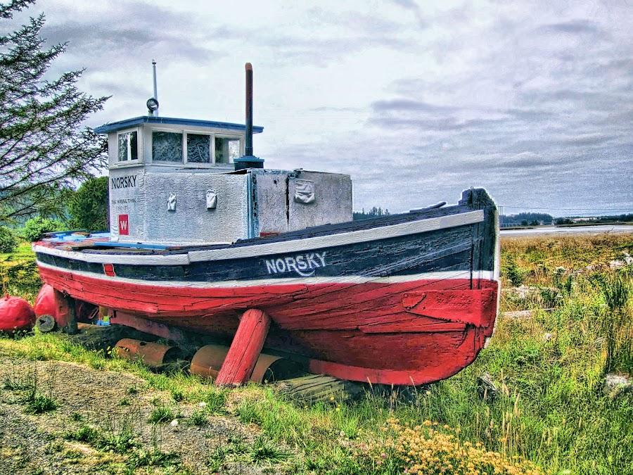 Norsky by Christy Sawyer - Transportation Boats ( boats )