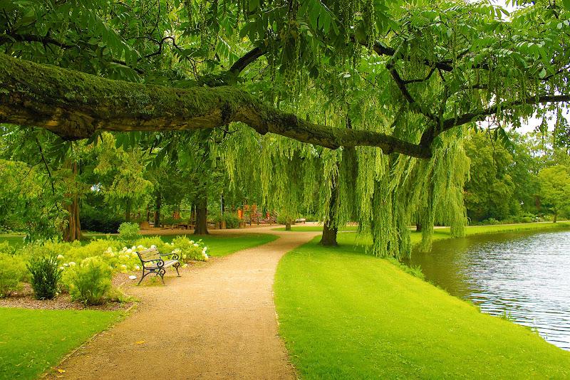 Photo: Green Park