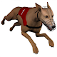 Dog Racing GHmanager for PC-Windows 7,8,10 and Mac