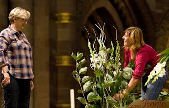 Photo: Arrangement de fleurs pour la cathédrale  Strasbourg, Bas-Rhin, Alsace, France