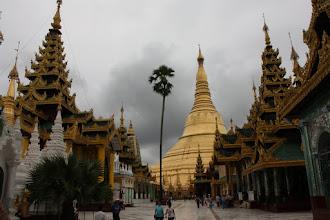 Photo: Year 2 Day 54 -  Glorious Main Stupa and Surrounding Temples Shwedagon Paya in Yangon