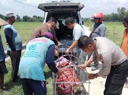 Peristiwa kematian di Kabupaten Ngawi