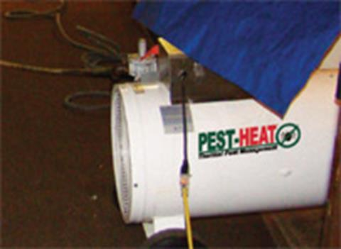 http://www.pestheat.com/ps_image/bedbugs3.jpg