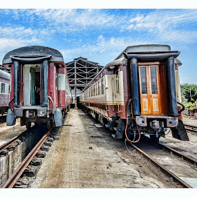 Carriage Highway by Rob Vandongen - Transportation Trains (  )