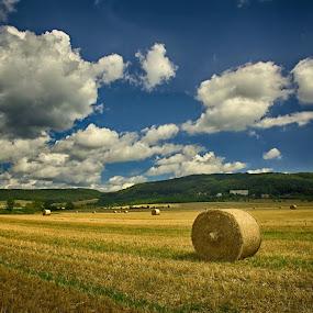 summer mood  by František Valčík - Landscapes Weather