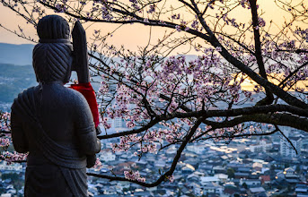 Photo: An idol at a small mountain side shrine overlooks Cherry Blossoms and the town of Kojima in Okayama Prefecture, Japan.
