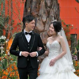 by Koh Chip Whye - Wedding Bride & Groom