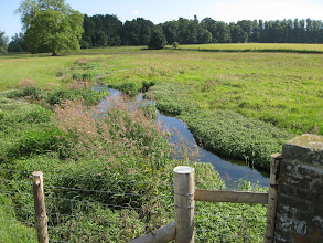 Photo: A walk from Bridge June 2008