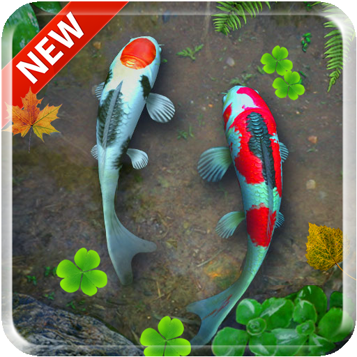 Download koi free live wallpaper google play softwares - 3d koi pond live wallpaper iphone ...