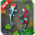 Koi Pond 3D Live Wallpaper Icon