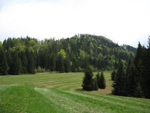 Photo: 08.Przed nami stroma góra Sestrč (993 lub 999 m) z Zamkiem Liptowskim na szczycie.