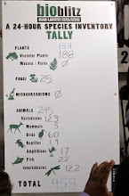 Photo: Let's get something straight. We delivered 431 taxa, but they could only handle the 122 that we got to species.