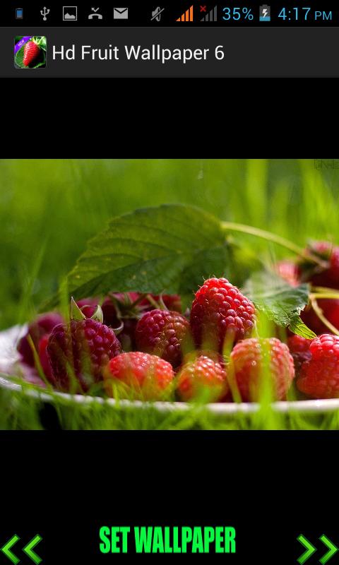 Скриншот Hd Fruit Wallpaper