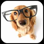 Dog Breeds Encyclopedia 1.0