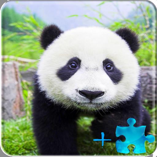パンダLWP+ゲームパズル 休閒 App LOGO-APP開箱王
