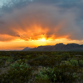 Big Bend Sunset by Jim O'Neill - Landscapes Sunsets & Sunrises ( desert sunset, sunset, texas, big bend national park, big bend, desert, national parks )