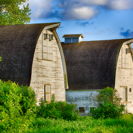 Two Barns by Briand Sanderson - Buildings & Architecture Other Exteriors ( farm, two, washington state, nisqually national wildlife refuge, double barns, agriculture, barns, united states,  )