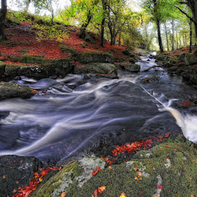 River liffey,wicklow hills by Paul Holmes - Landscapes Waterscapes