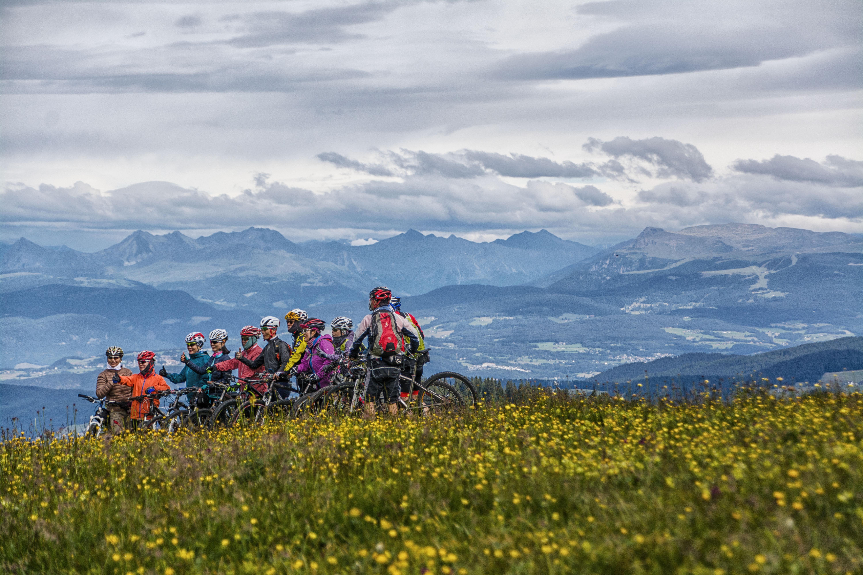 team bike di vaiolet