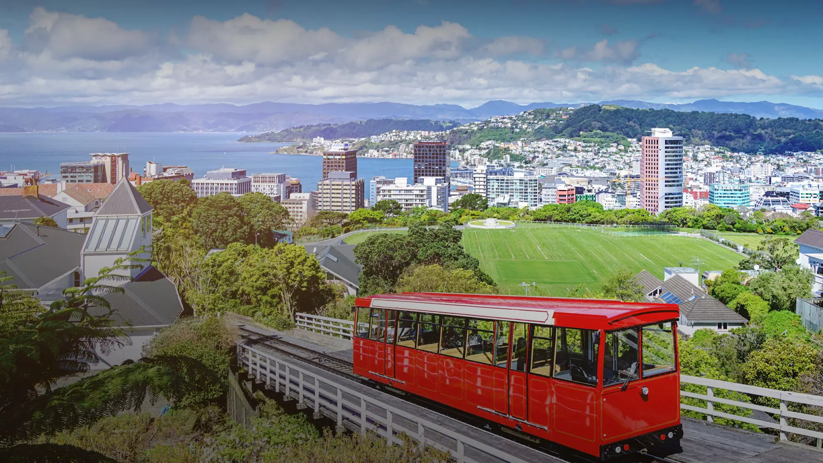 Wellington Tours