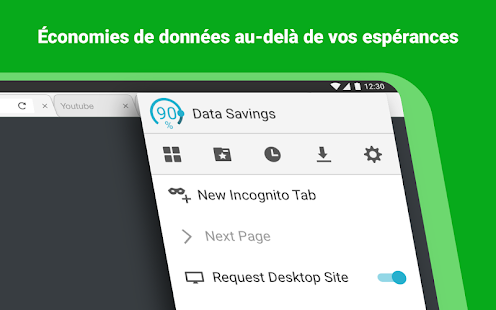 Puffin Web Browser – Vignette de la capture d'écran