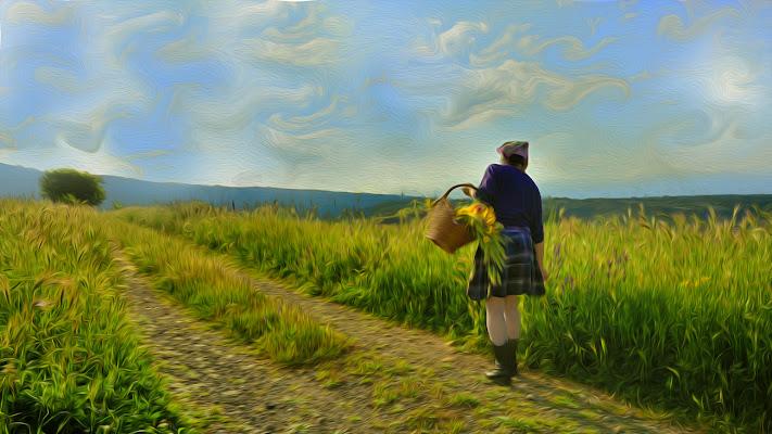 Campi di grano di leonardo valeriano