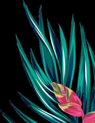 Feuille et fleur HAGL