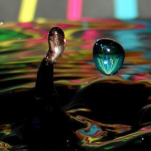 drops Jan 22 20131506.jpg